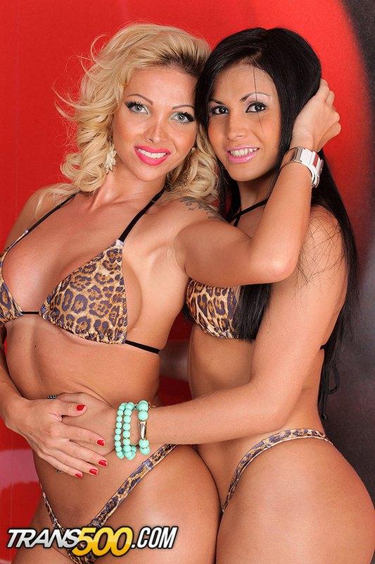 Carla Novais - Tranny Porn Models