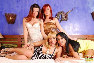 Horny queens in an all t-girl gangbang
